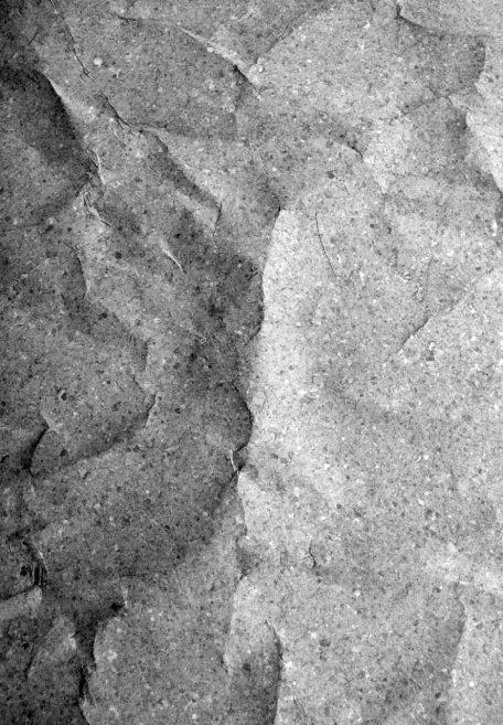 Aspect minéral Carea Rhodes, pour une façade organique (bardage avec ossature et sans ossature, vêture)